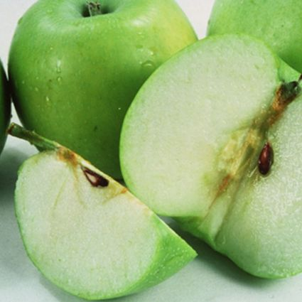 Mutsu Apple Tree Garden Plant