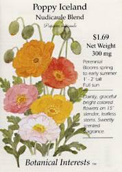 Poppy Iceland Nudicaule Mix Seeds