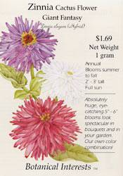 Zinnia Cactus Flower Mix Seeds