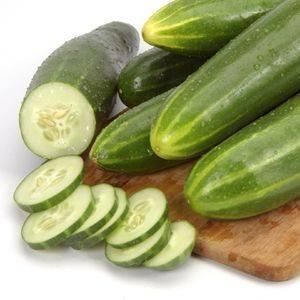 Cucumber Marketmore 76 Organic Organic Plant