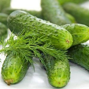 Cucumber National Pickling Organic Organic Plant