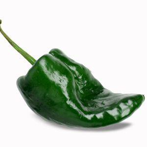 Pepper Poblano Ancho Organic Organic Plant