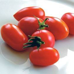 Tomato Juliette Organic Organic Plant